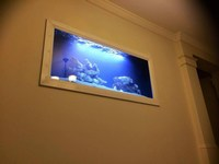Joey13 - Custom In Wall Mixed Reef (4.88ft x 2.5ft x 2.25ft)